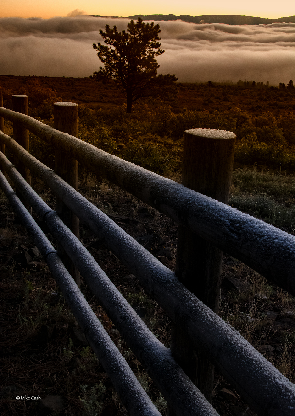 Fog over Ridgeway past an icy fence,