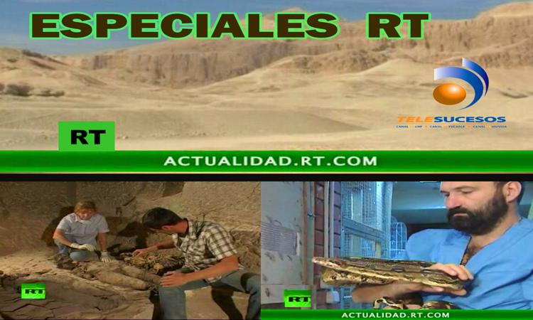ESPECIALES+RT.png