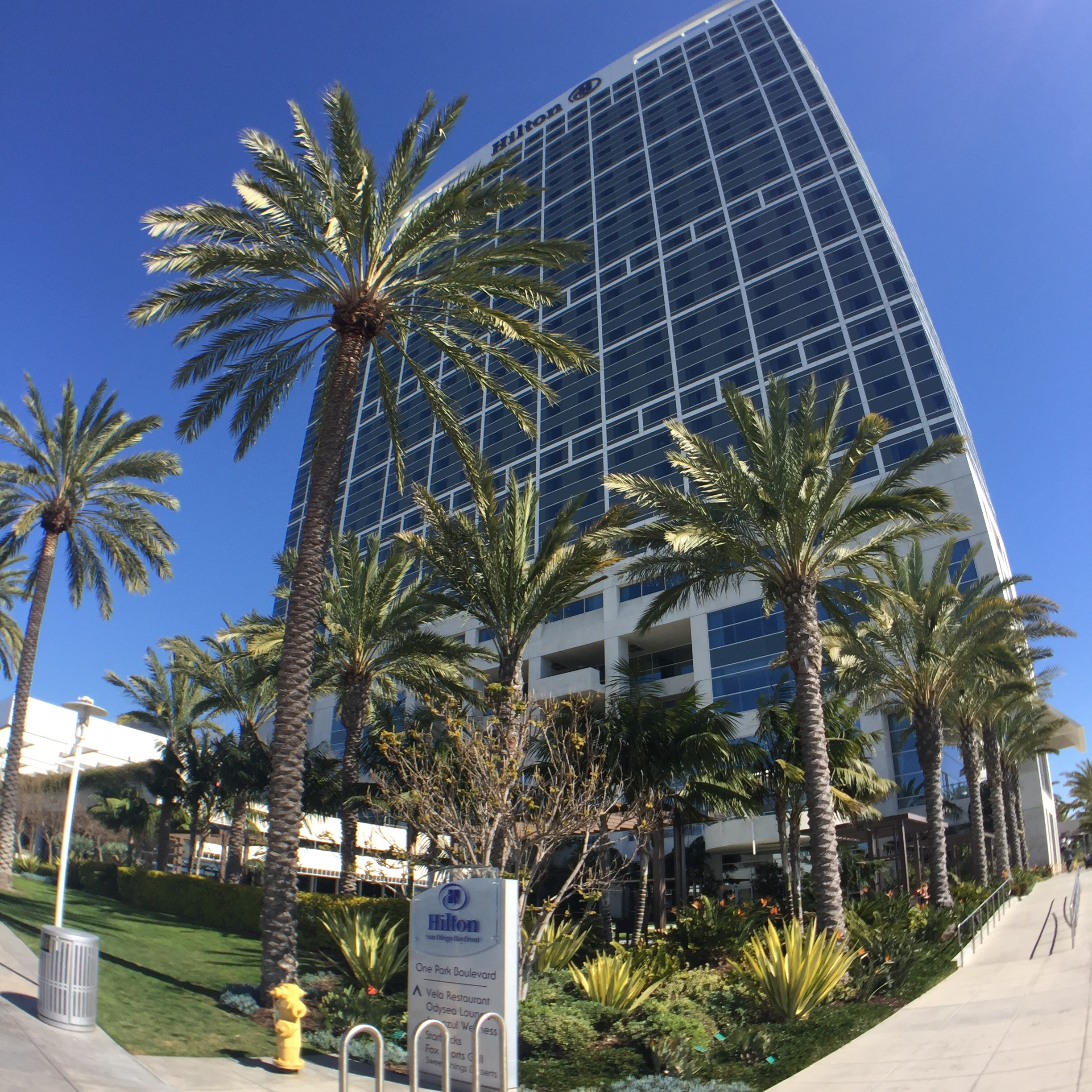 Palm trees welcomed us to the Hilton Bayfront,situated just outside the San Diego Convention Center and across from Petco Park (home of the Padres).
