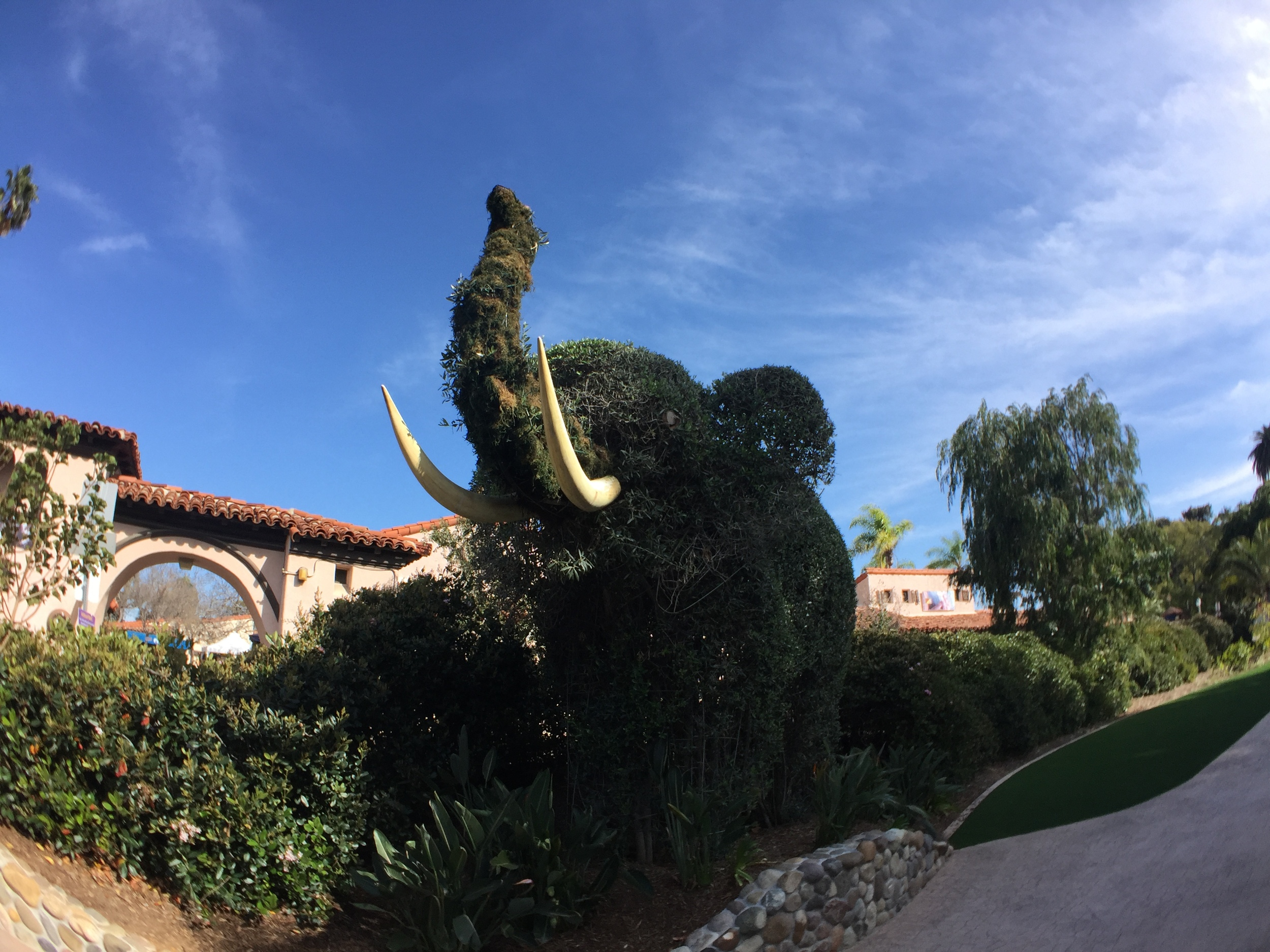Then, we spent an afternoon documenting the beauty of Balboa Park—home to the  San Diego Zoo , a botanical gardens, and several museums.