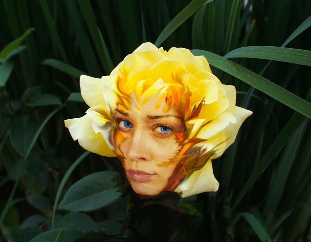Fiona Rose.jpg
