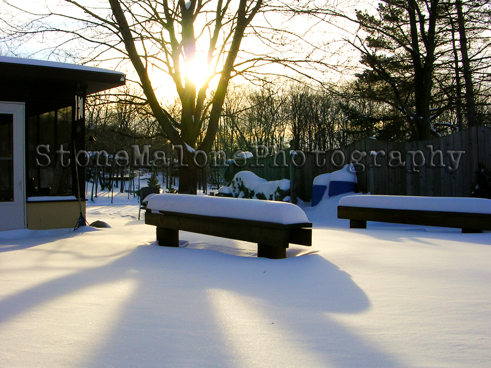 SNOW'S-BENCH.png