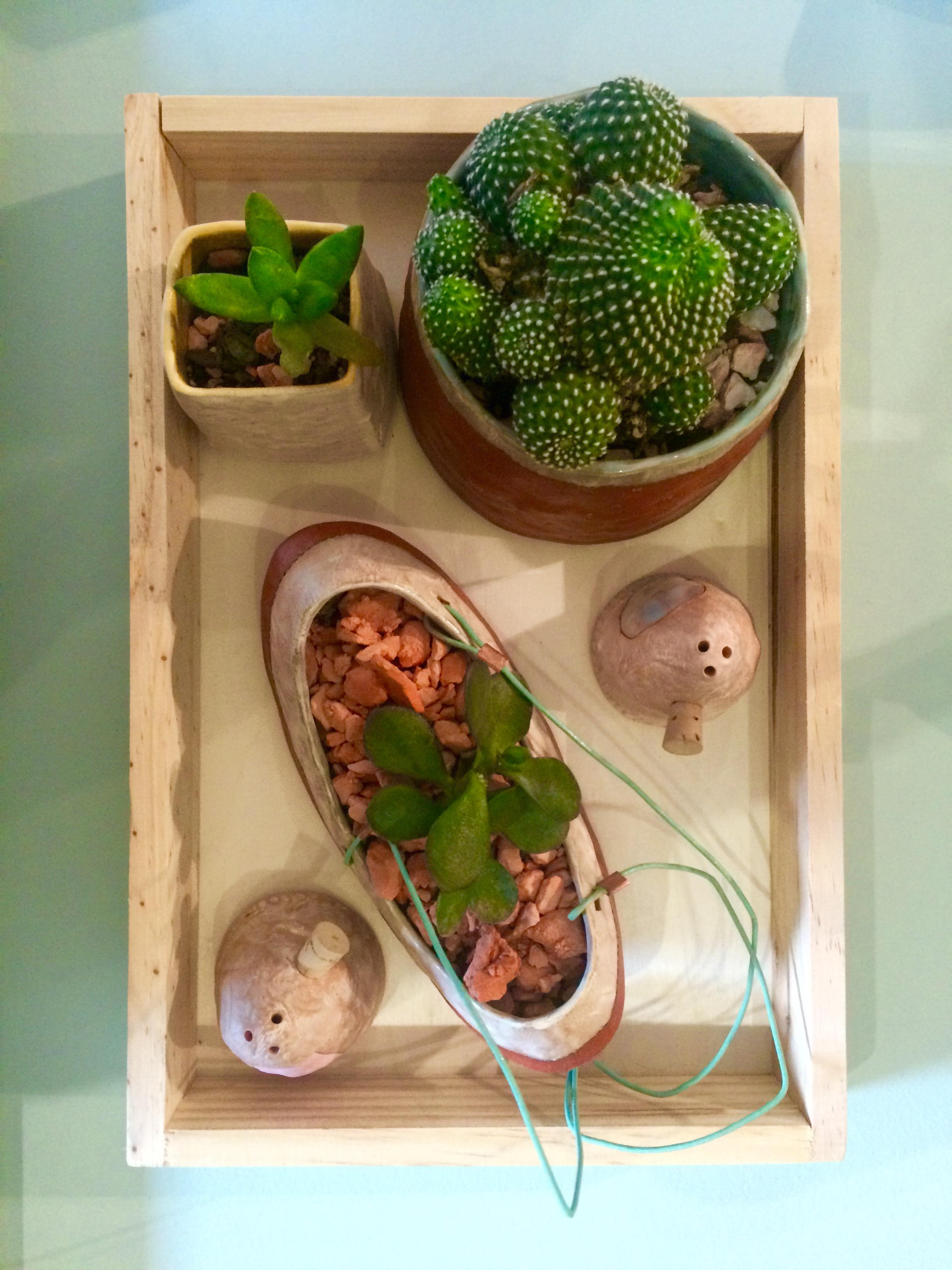 Ceramic Planters, Mert.jpg