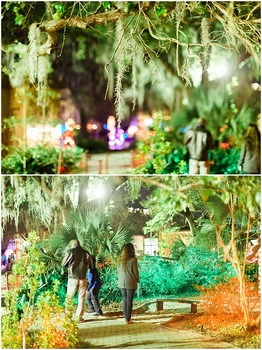 New-Orleans-City-Park-Christmas-at-the-oaks-photo_0005.jpg