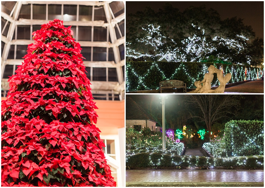 New-Orleans-City-Park-Christmas-at-the-oaks-photo_0010.jpg