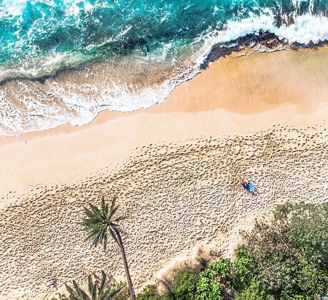 Golden hour from above 🤓  #hawaii #oahu #dji #djiglobal #mavicair #adobelightroom #sunsetbeach #artofvisuals #liveoutdoors #earth #beachin