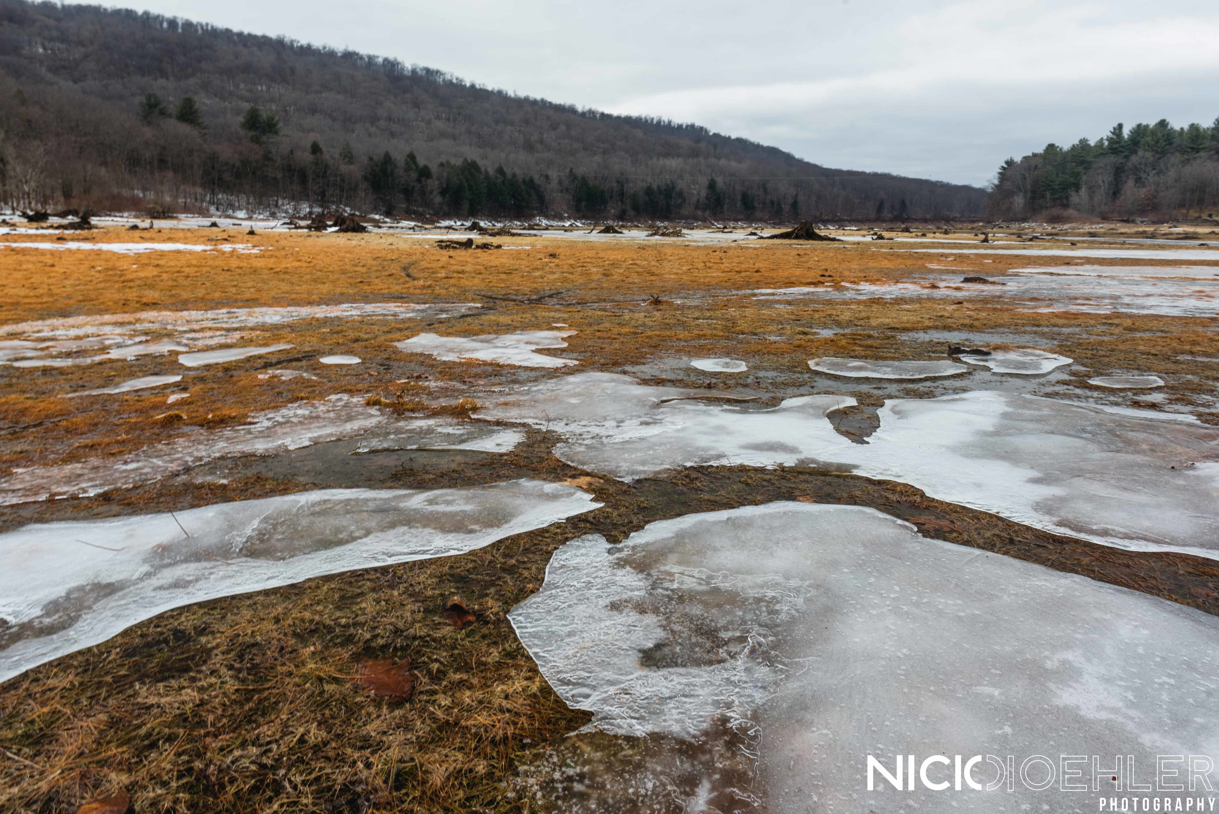 Ice pieces lay spread out across a wet grassland.