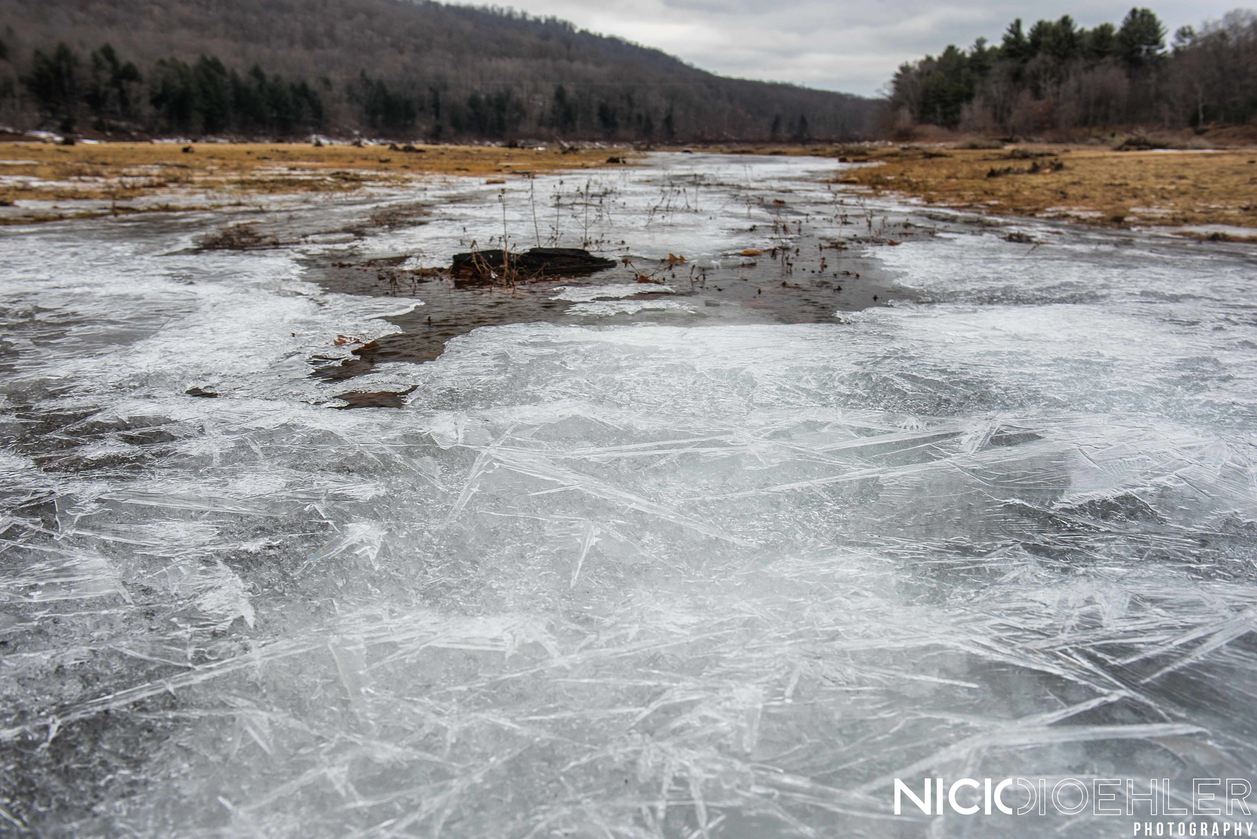 Ice crystals formed a thin layer above the thicker ice.
