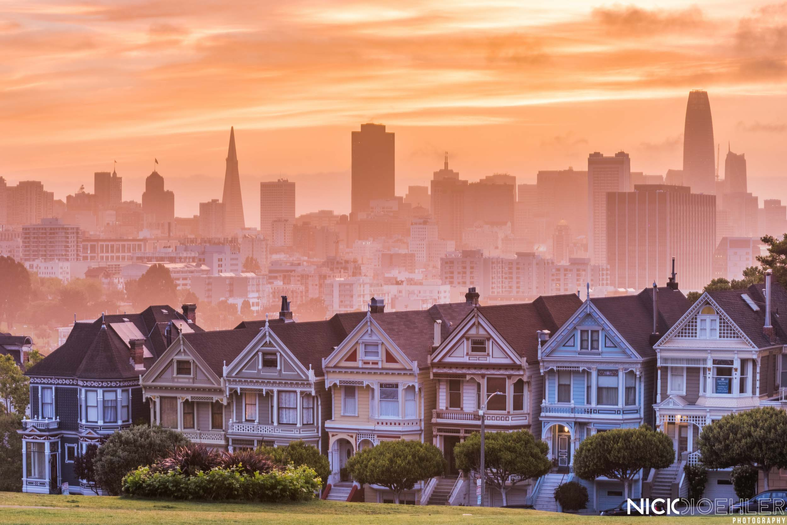 San Francisco: Beautiful skyline behind the famous Painted Ladies.