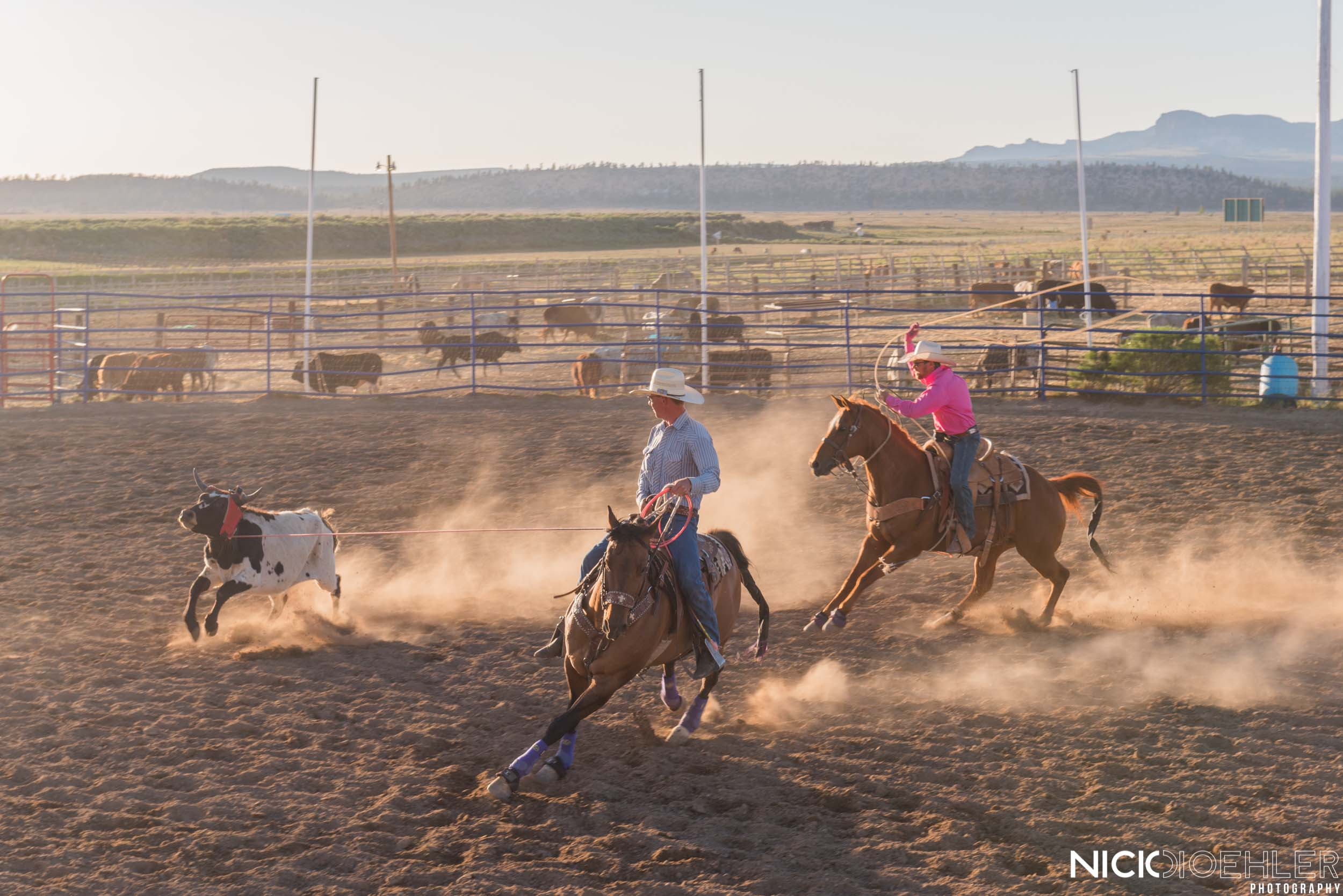 Bryce, Utah: I've always wanted to see a rodeo. So this was my one time!