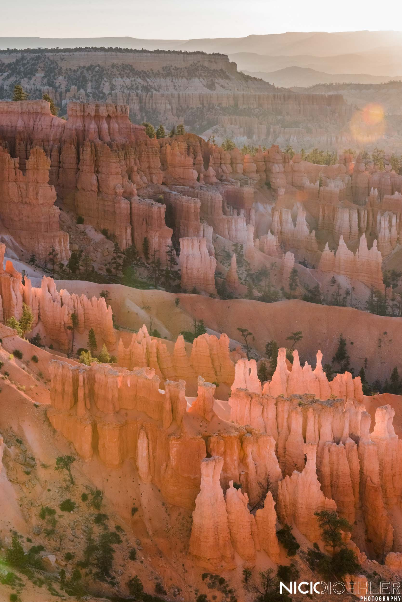Bryce Canyon National Park: The tons of Hoodoos layered with the morning glow.