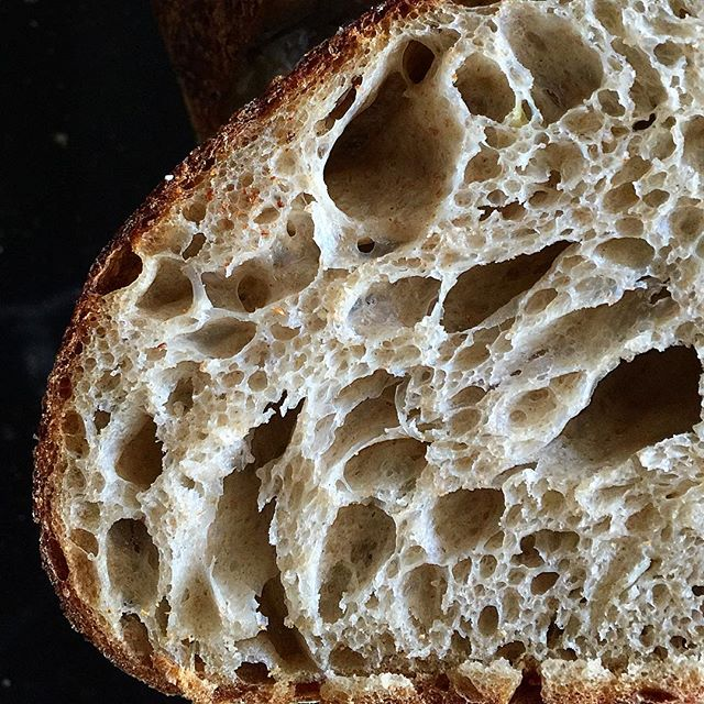 @glutton.for.gluten  makes me want to go make some bread!