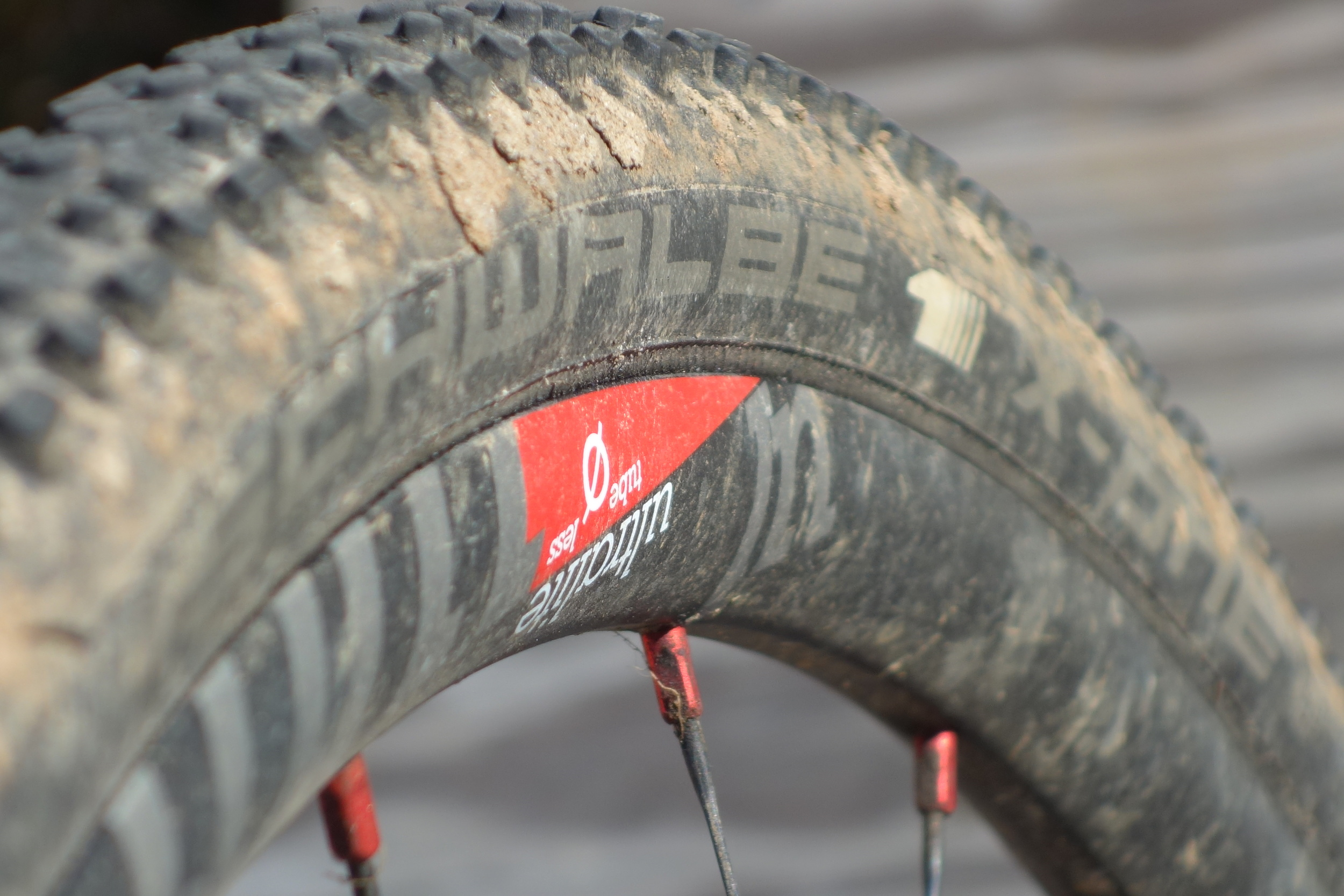 Shwalbe X-One Tubeless tires after a season of use