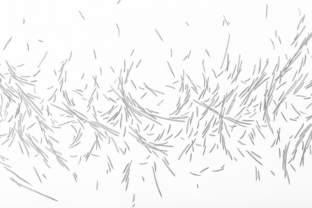 LIFE-Ayo-Sopeju-art-mid-detail