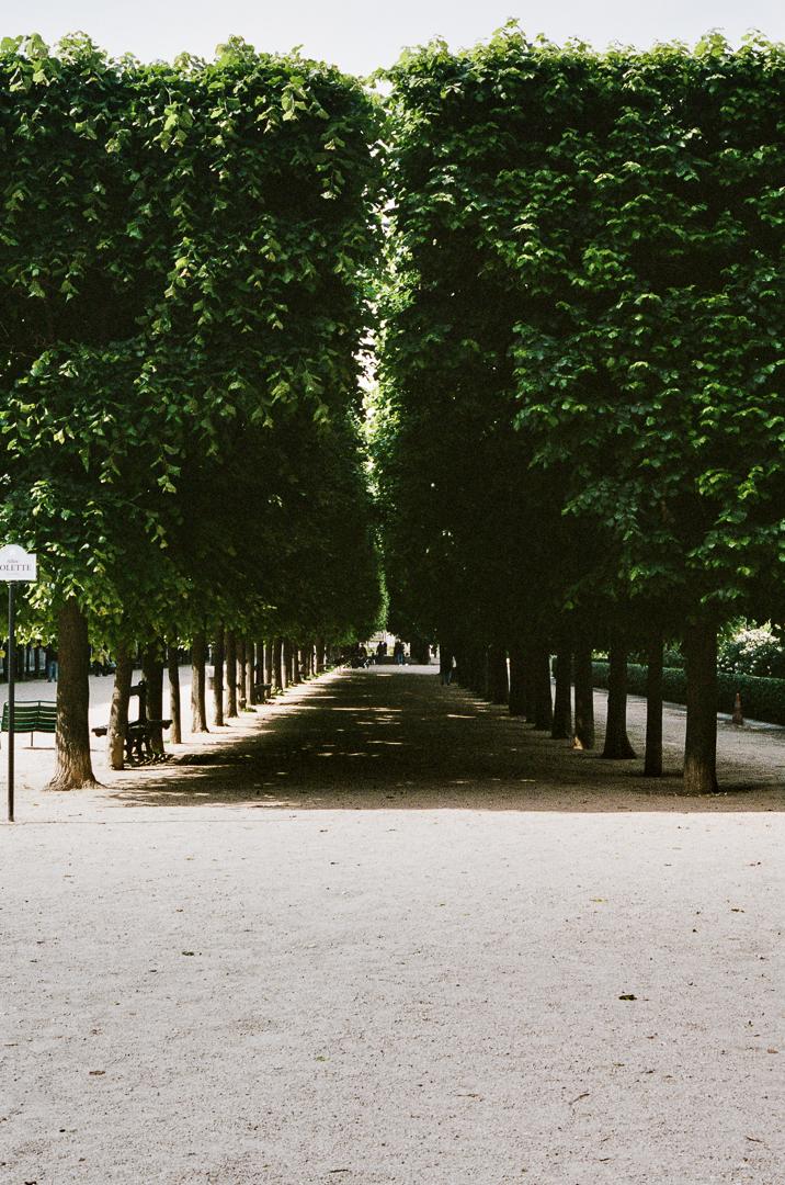 LIFE-Paris-Vertical-2.jpg