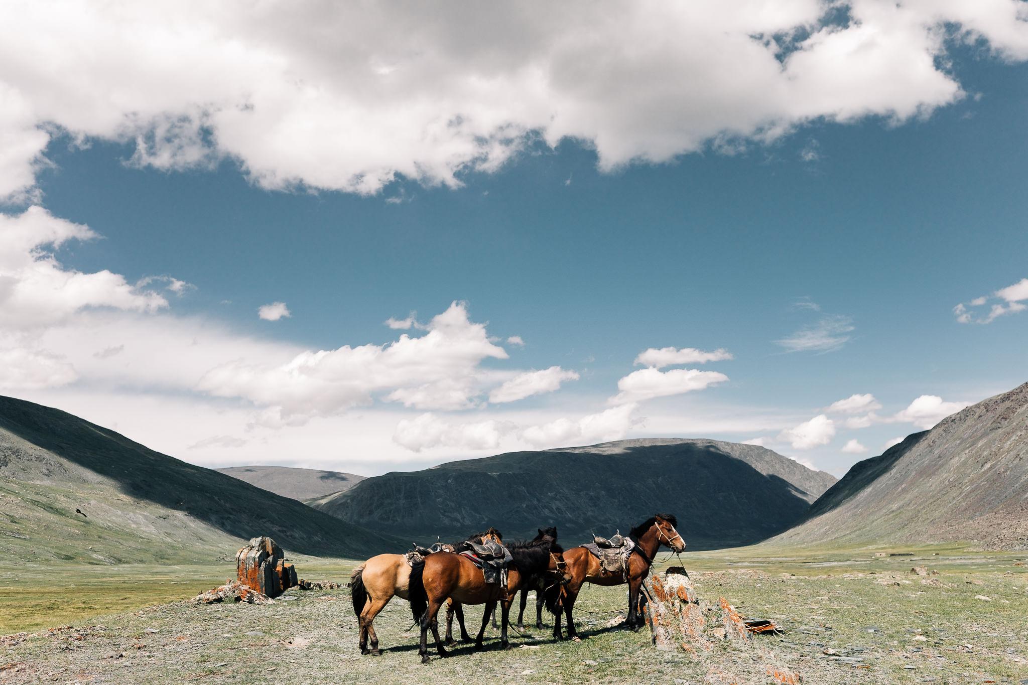 Mongolia Blog (31 of 73).jpg