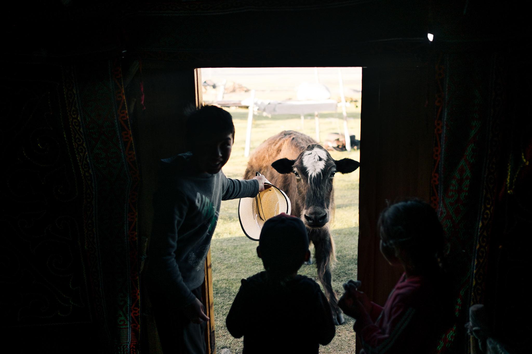 Mongolia Blog (60 of 73).jpg