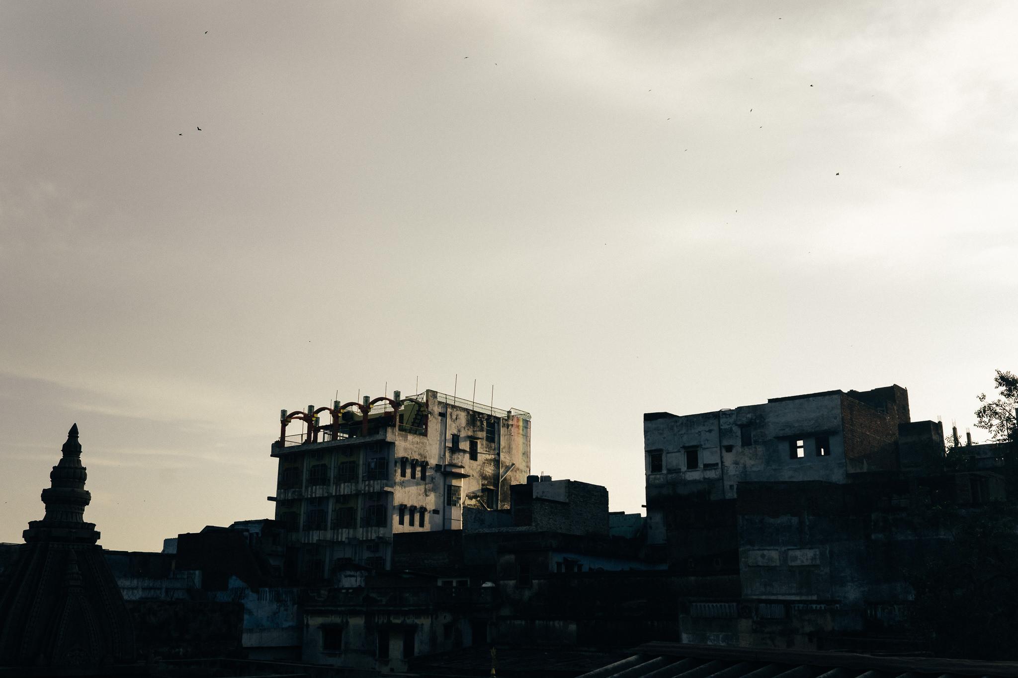 India Photography Blog (32 of 61).jpg