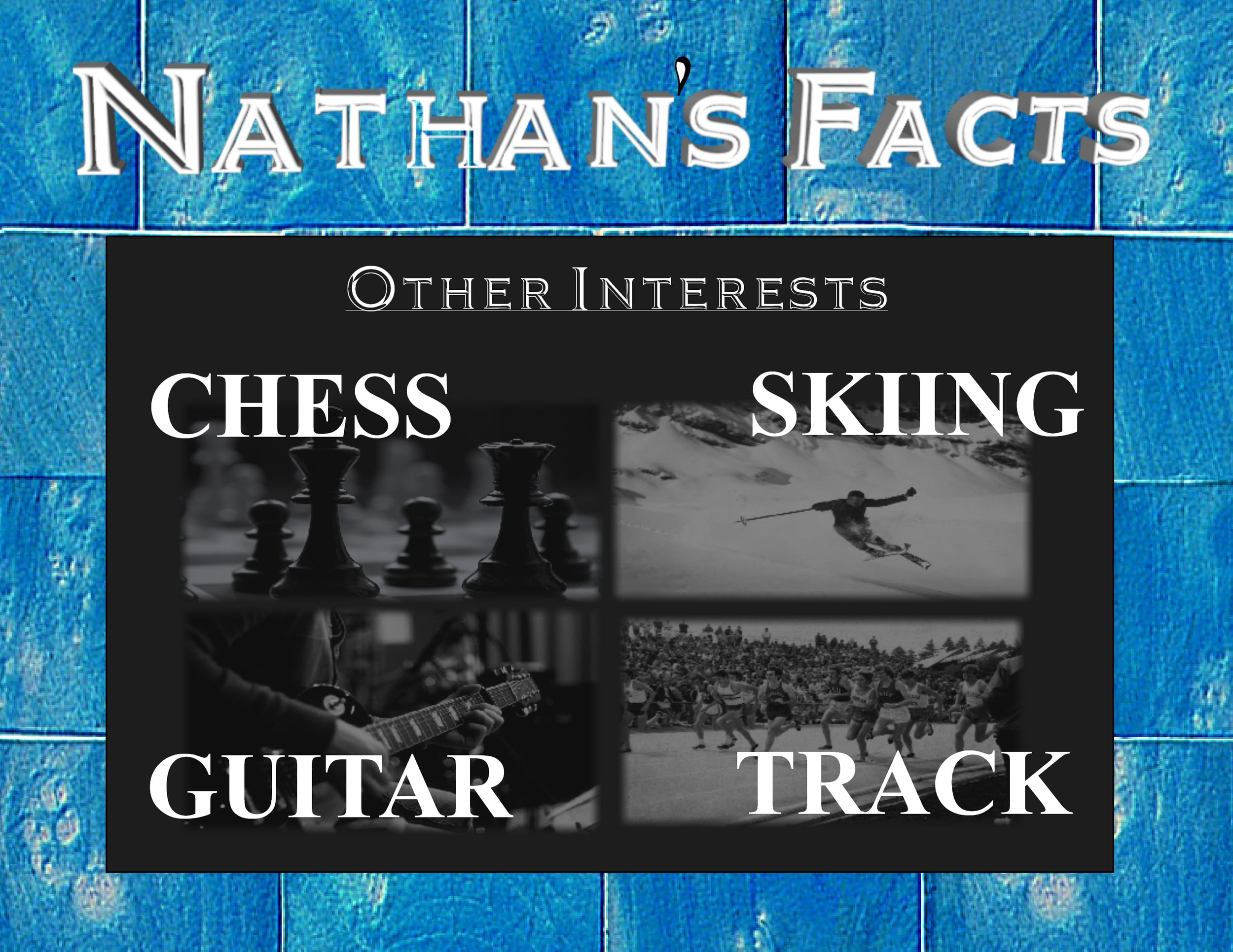 Nathans Facts Other Interests.JPG