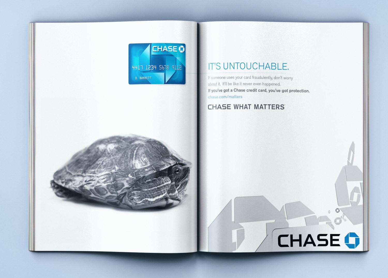 CH-ADVOCACY-TURTLE.jpg