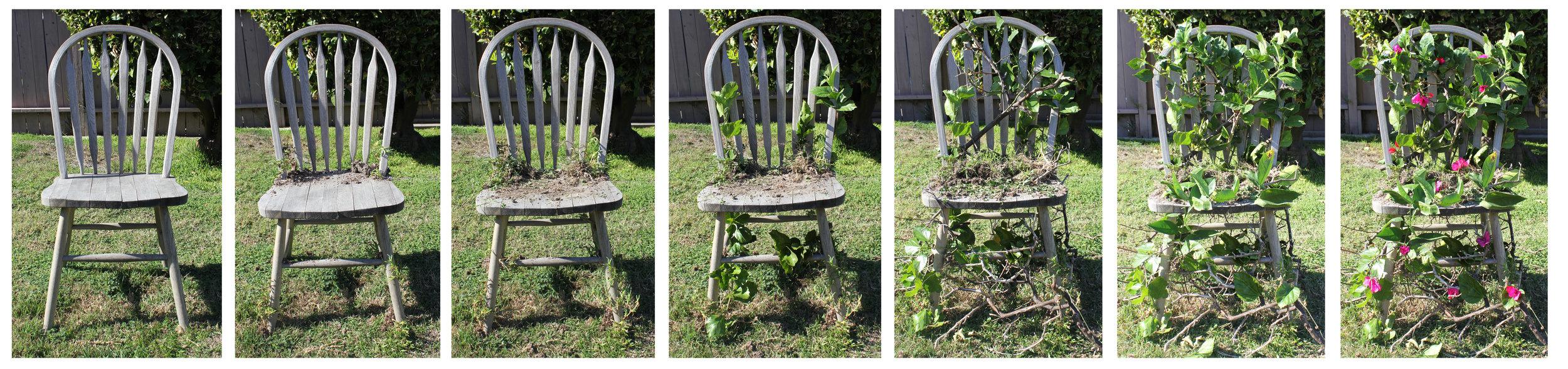 chair progression.jpg