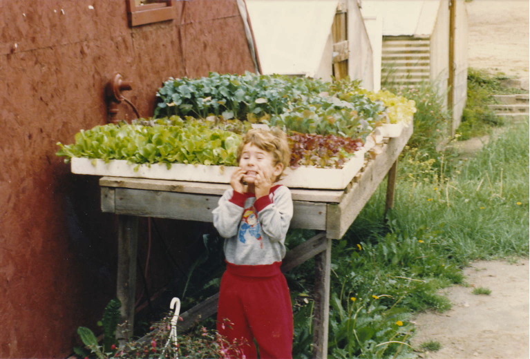 babyray veggiesstarts EFHIST.jpg