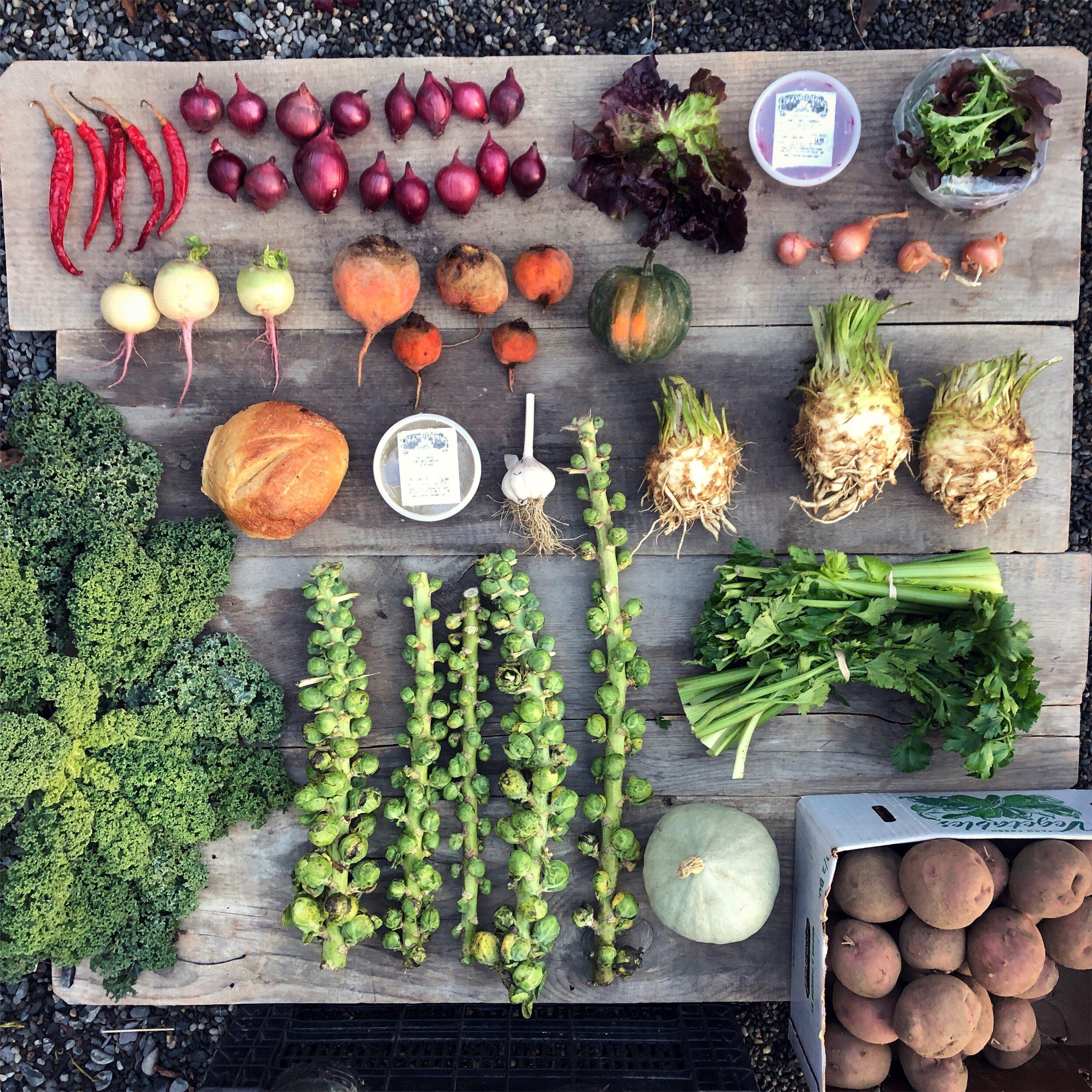 30  60 90 150 300 Grain White Eggplant Aubergine Organic Vegetables Seeds