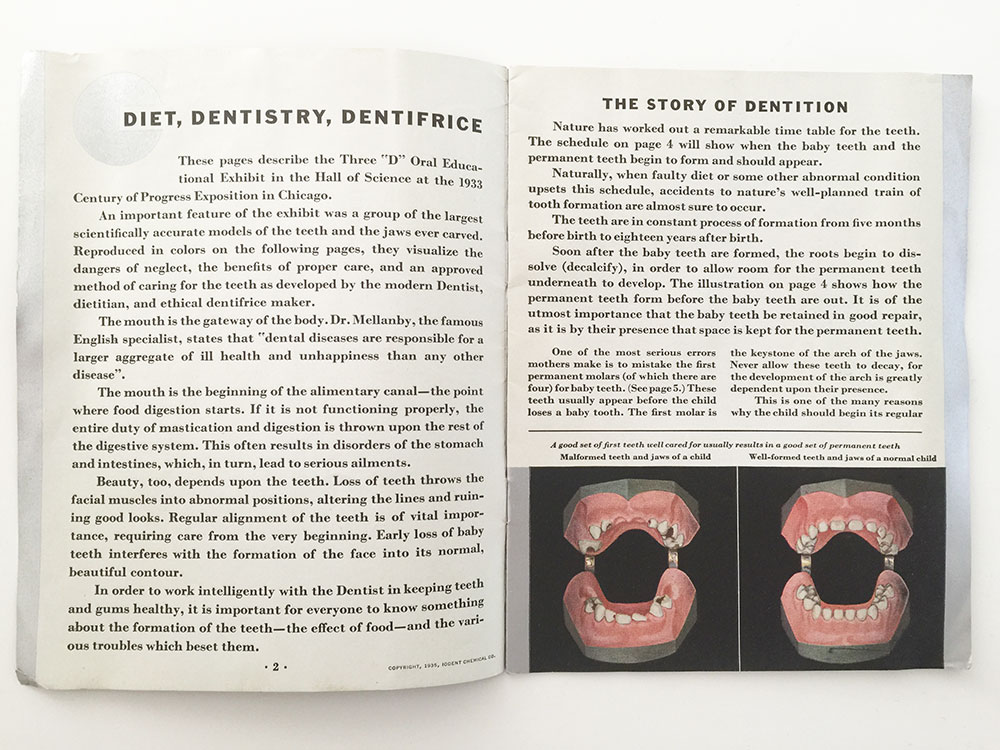The Story of Dentition