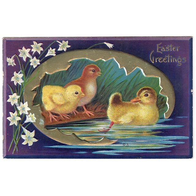 Easter Greetings! from Jennette to Winifred in 1911 (& Dad and me in 2018)⠀ .⠀ Postcard by E. Nash.⠀ .⠀ #graphicdesign #easter #familyhistory #ancestry #vintagepostcard #design #lithograph #embossedpostcard #sharingthepast