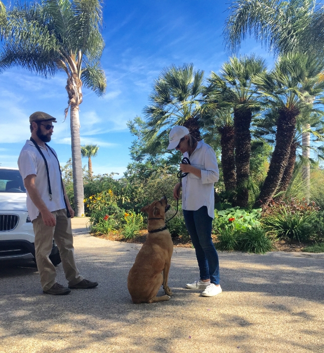 Cece Bloum working with Lucky and local dog trainer, Randy Davis of    Better By The Pound
