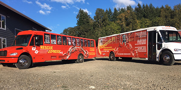 Rescue Express, an initiative of MGM Animal Foundation, has been providing free weekly transport for 100-150 dogs and cats on their shiny new customized transport buses for two and half years.