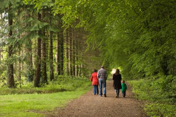 Family-Walking-in-Woods.jpg