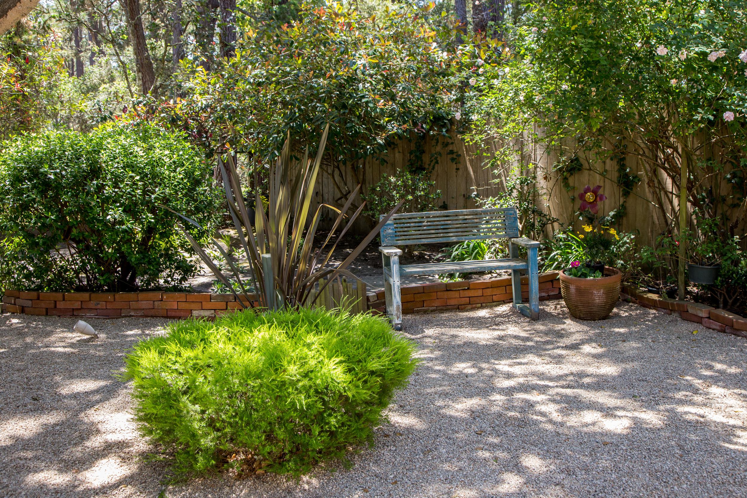 22 backyard 3.jpg