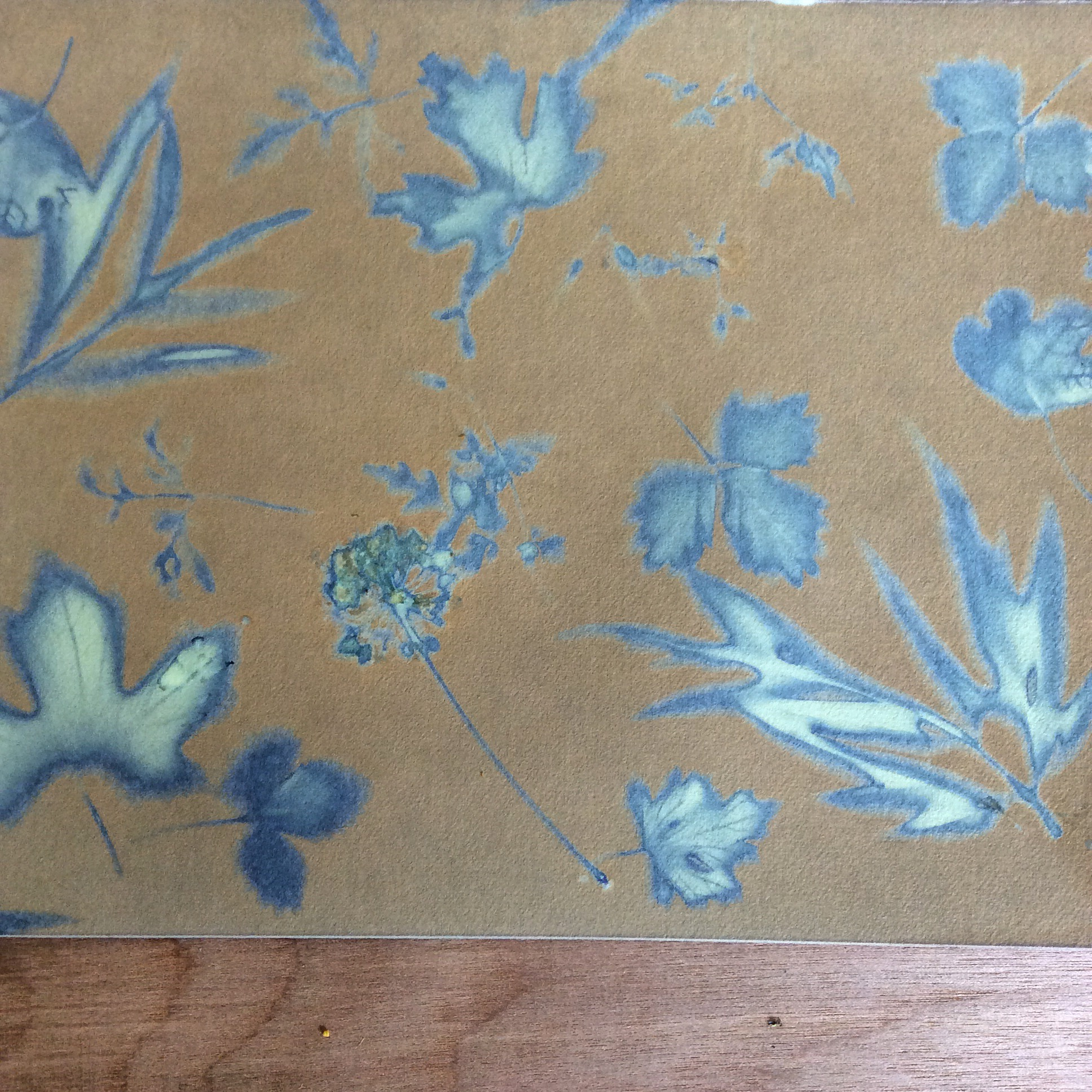 Delicate print, just prior to being washed.