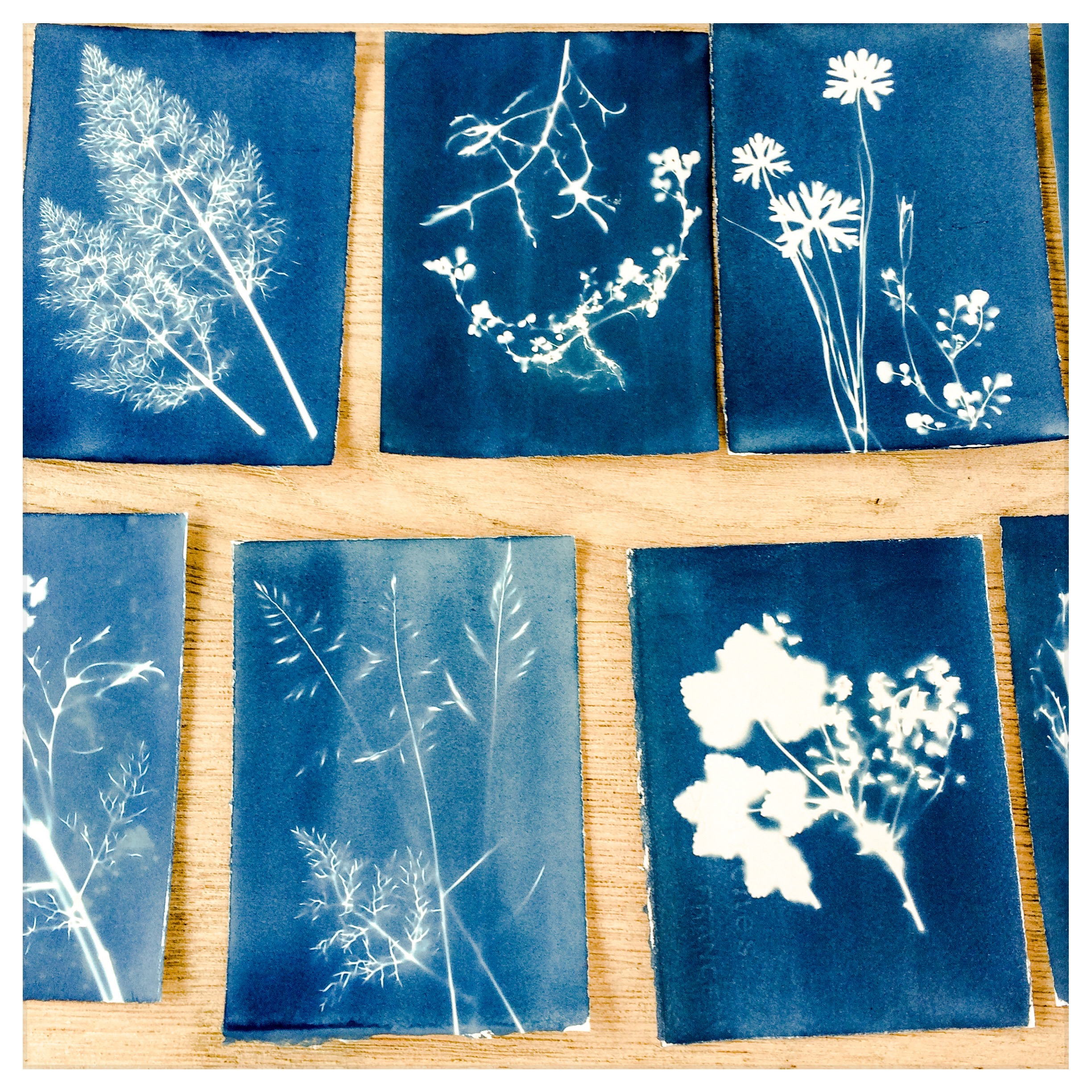Students initial test prints, checking exposure times.