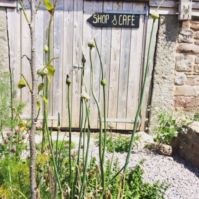 The Edible Garden and signpost to the wonderful Pig and Apple Cafe at the Farm.