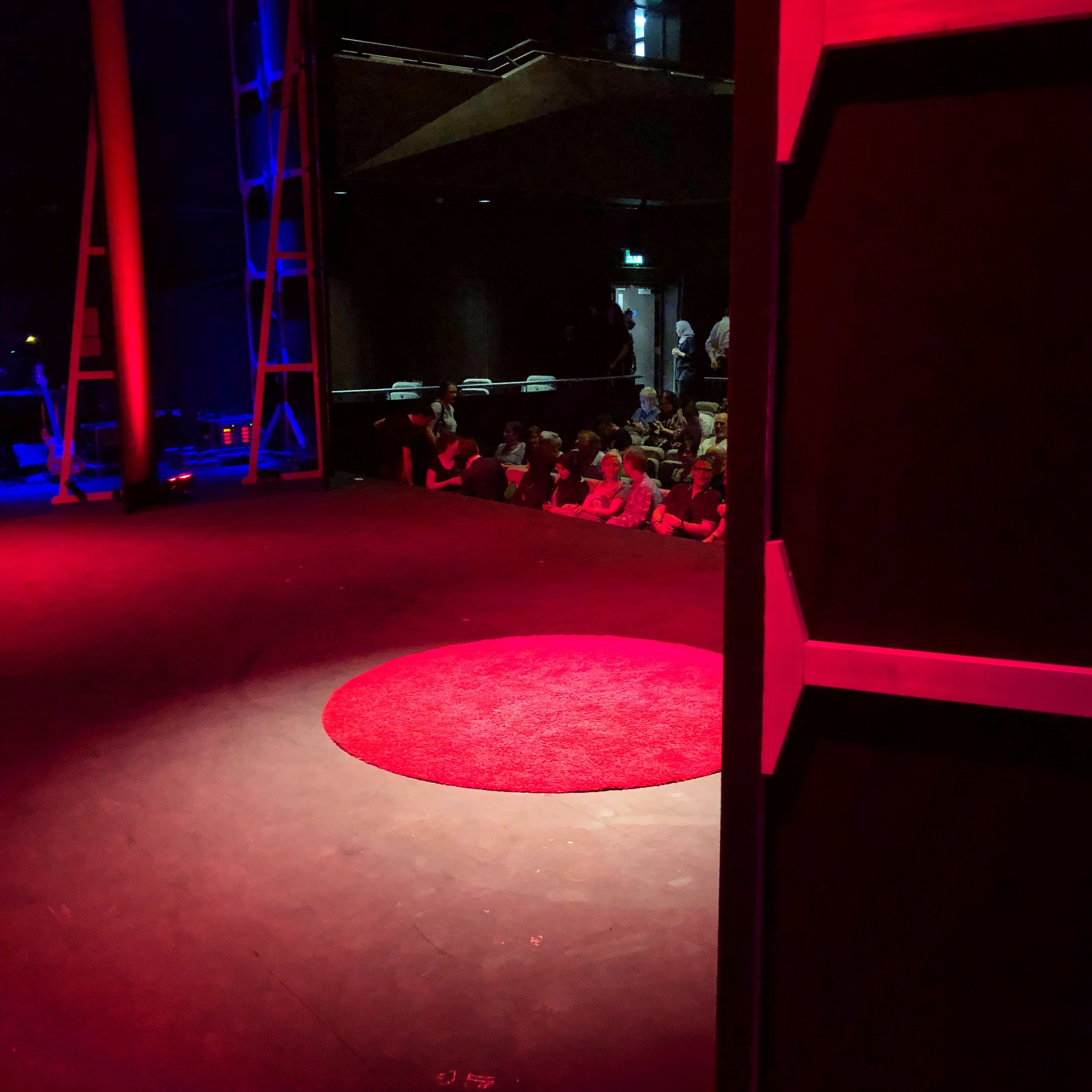 Audience coming in... view from wings - Famous TED red carpet!