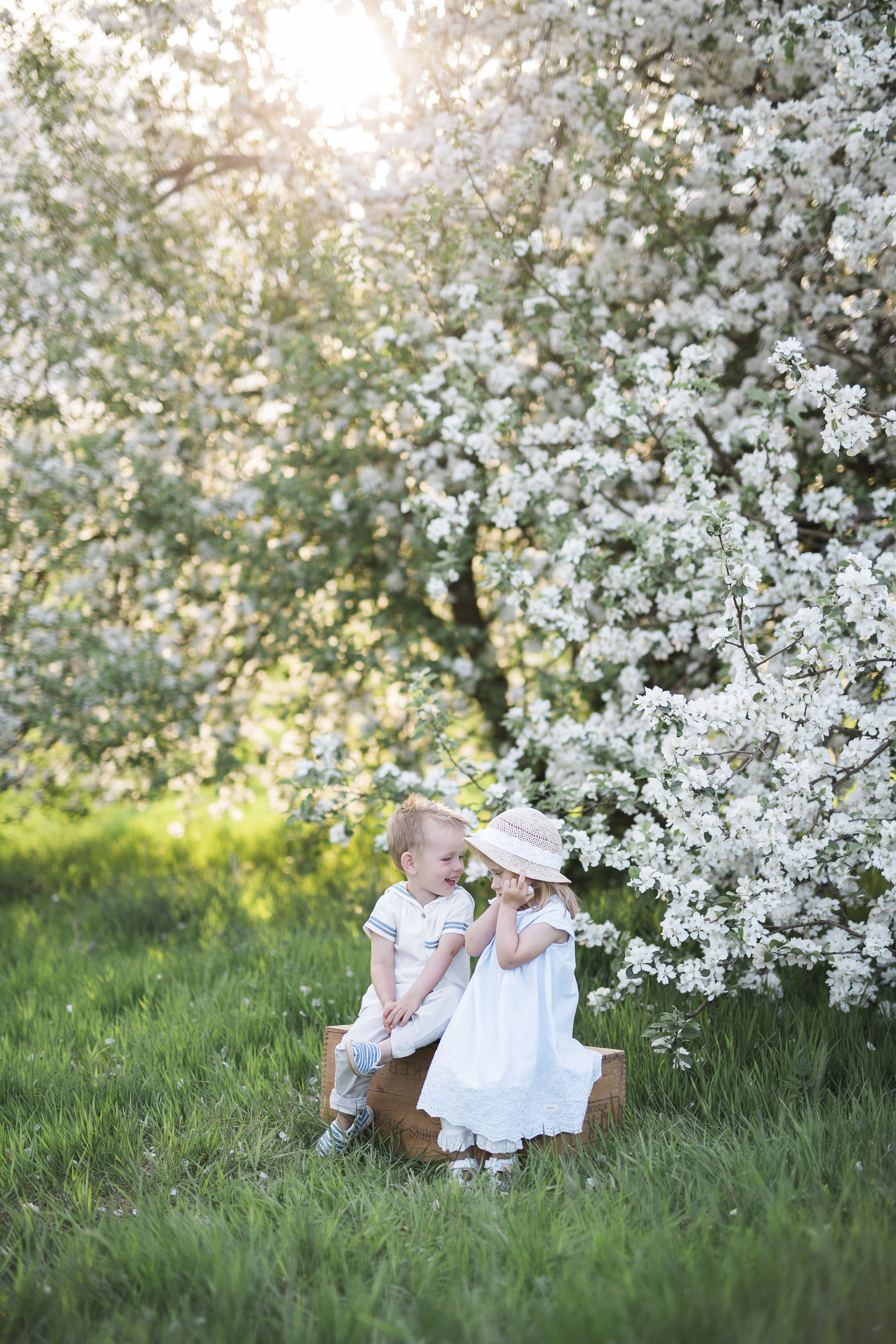 Barn & Familjefotografering Linnea & August