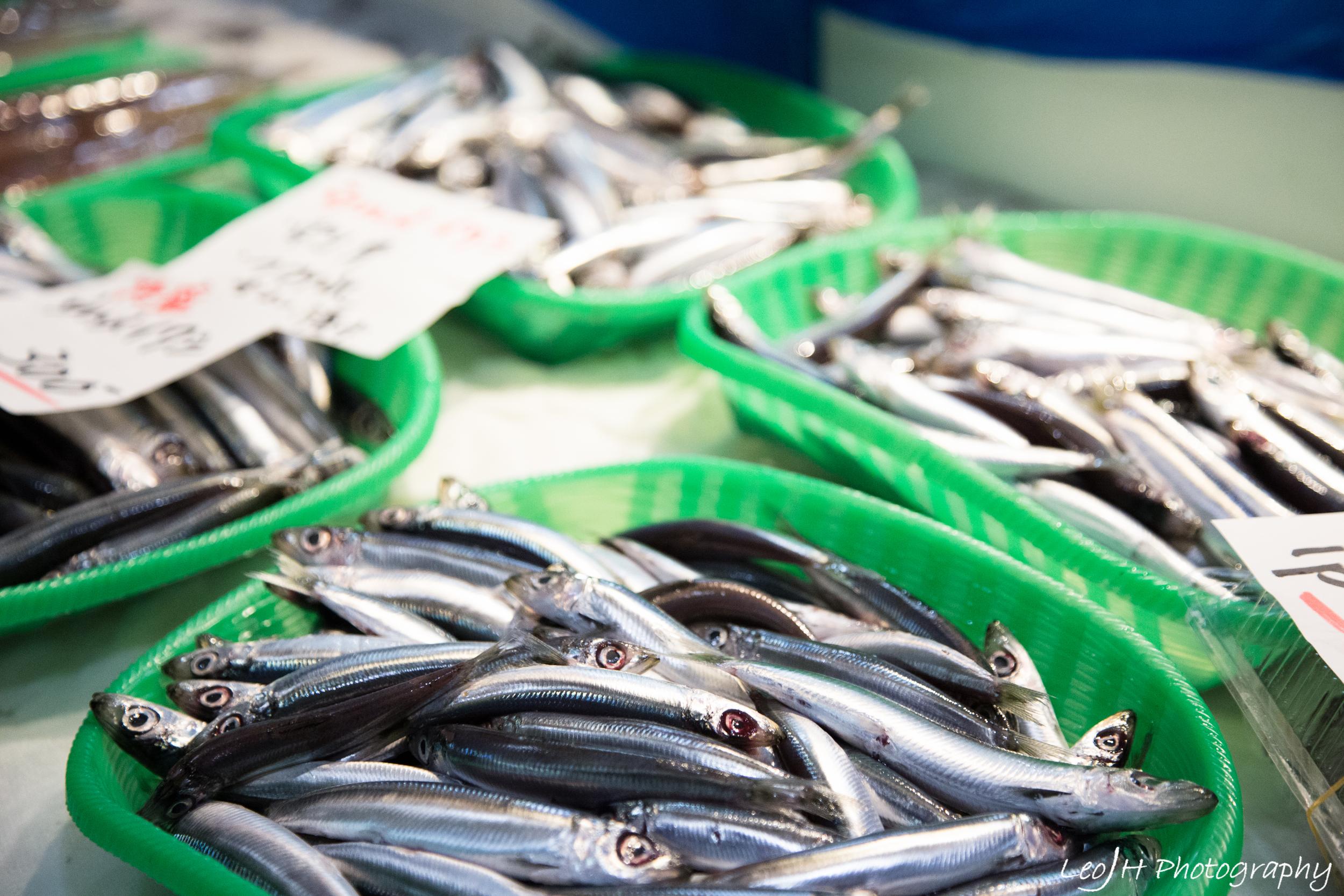 Fresh seafood everywhere around Tsukiji