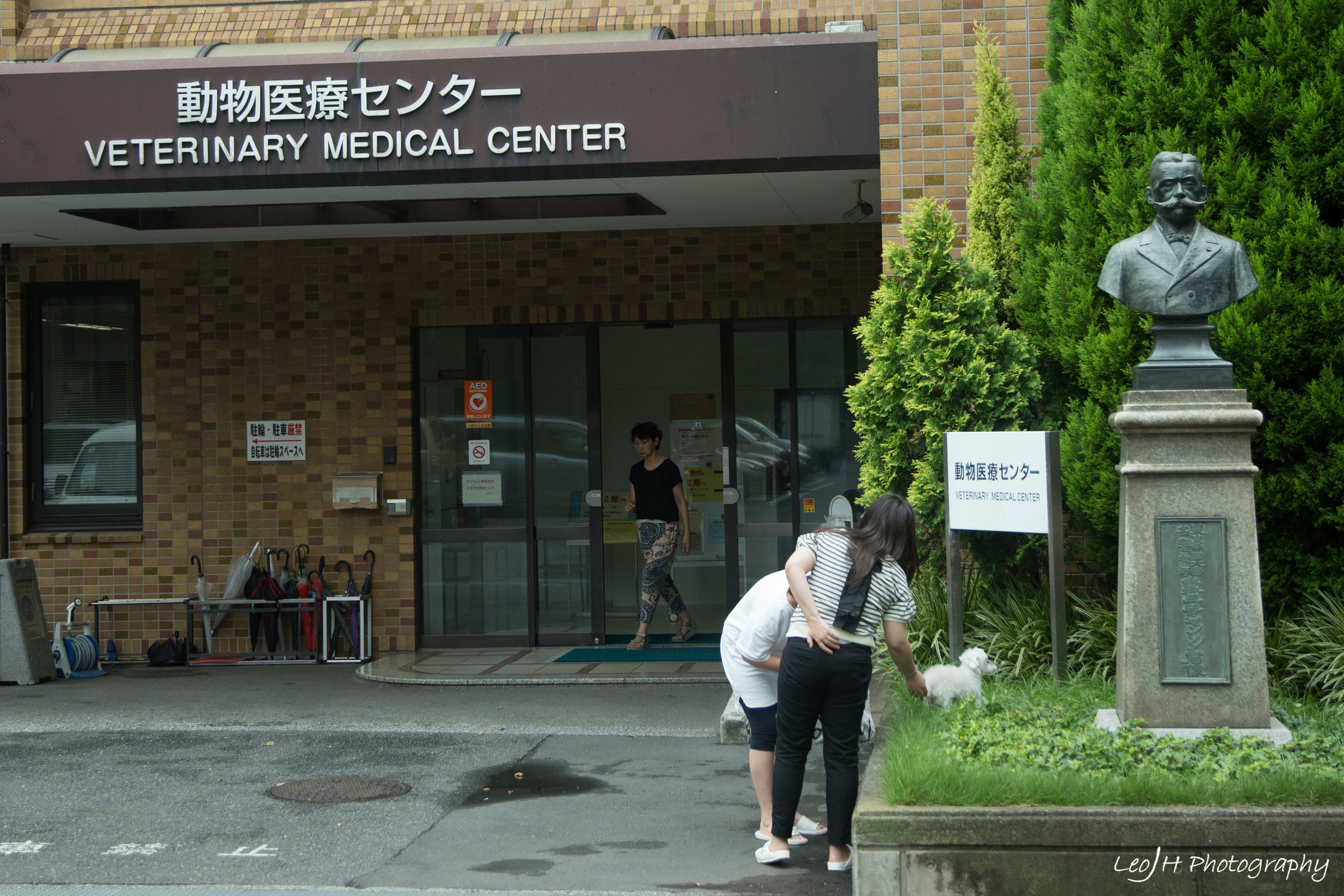 Todai's Veterinary Medical Center. Looks like the public actually brings animals here for treatment
