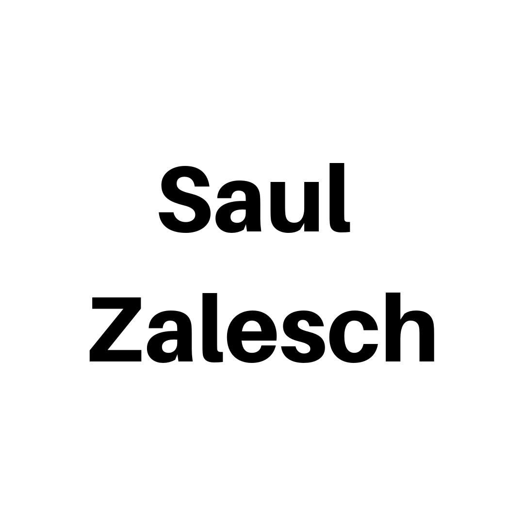 Saul Zalesch (3).jpg