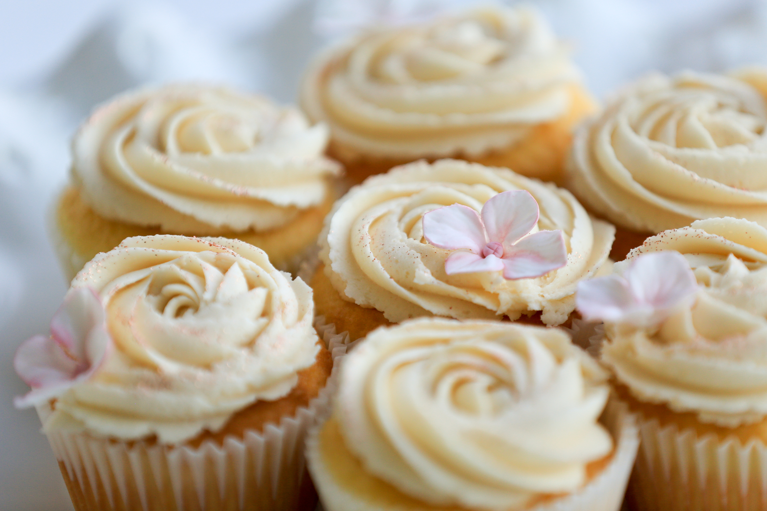 Large Vanilla Cupcakes with Sugar Flowers