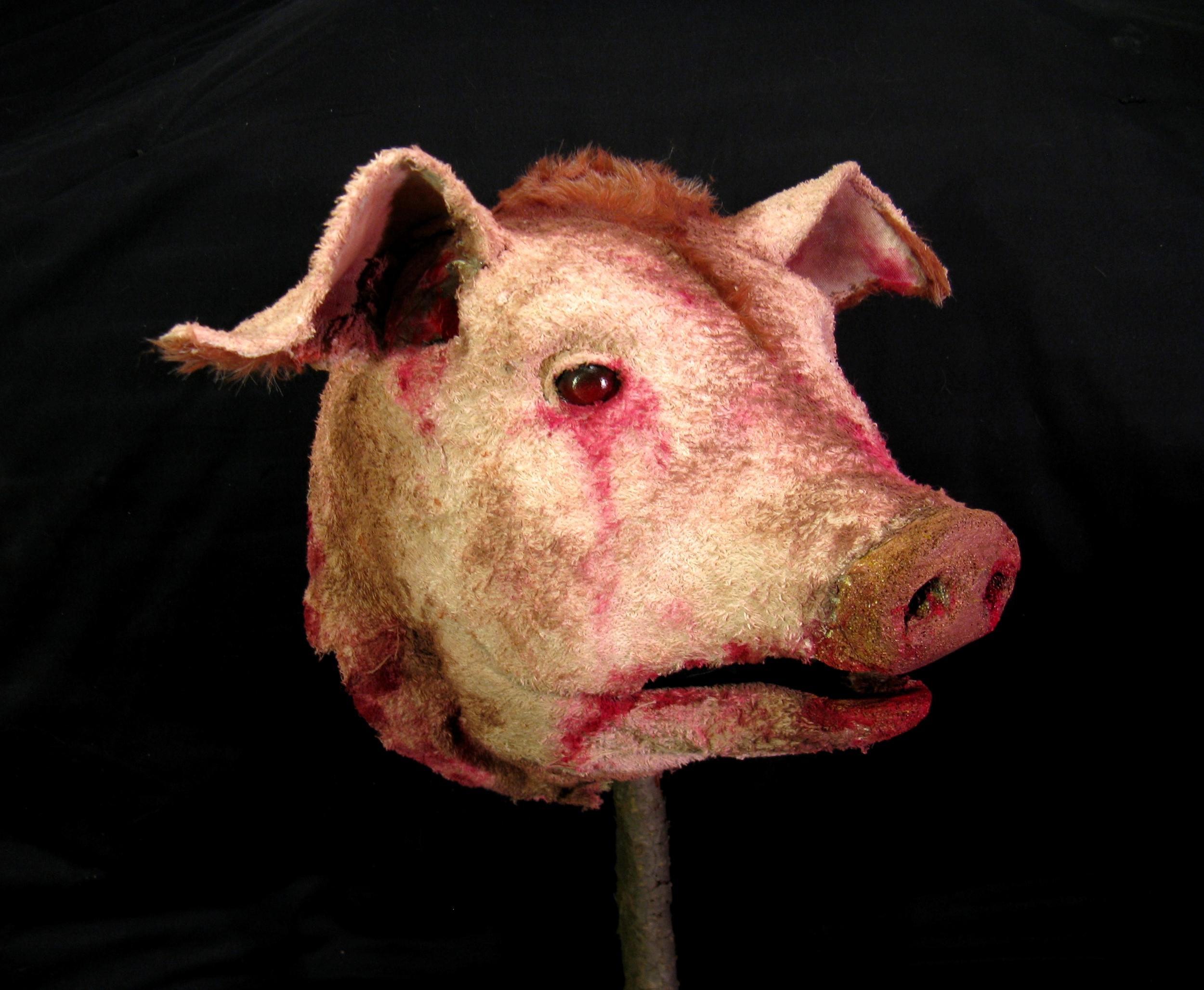 Pig's Head, 2008