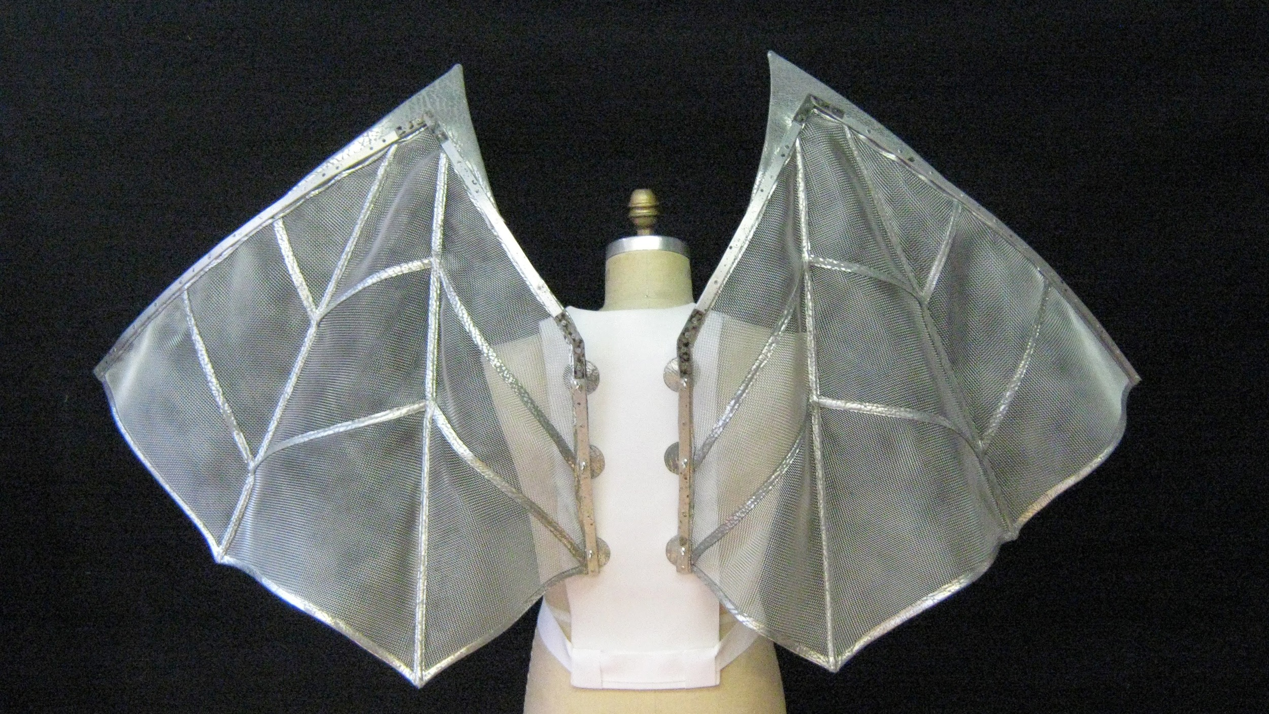 Silver Wings, Carelli's Costumes 2014