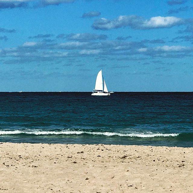 Sailboat ahoy.