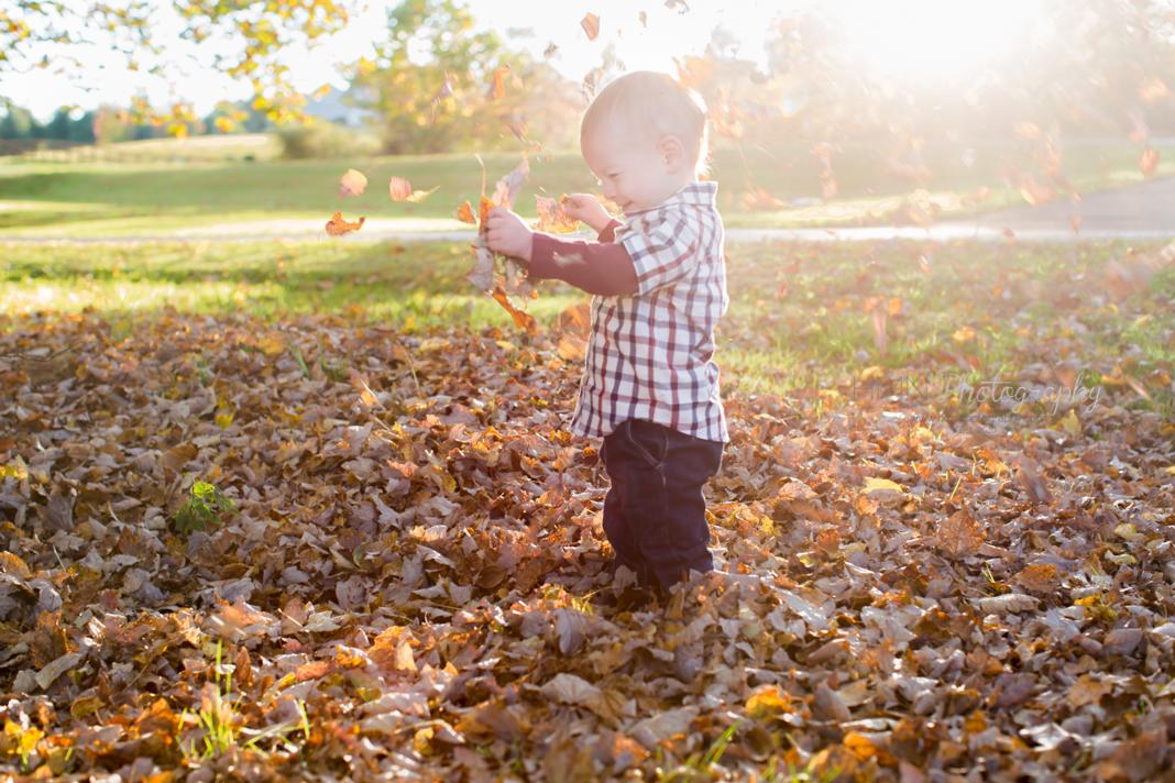 Fall Photos
