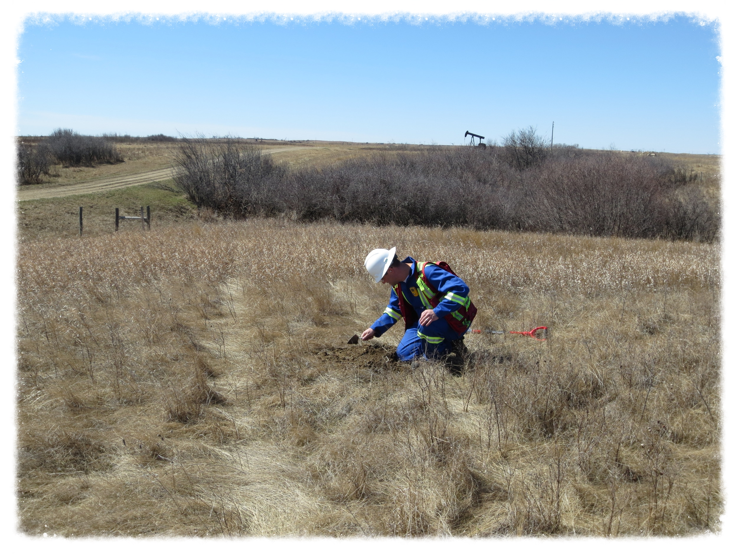 Assessing a proposed flowline right-of-way in southern Saskatchewan.