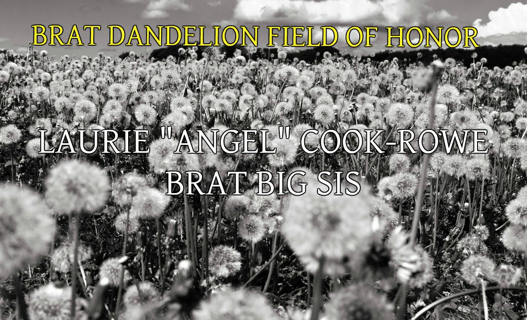 LAURIE COOK-ROWE BRAT FIELD OF HONOR
