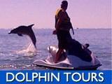 nav-dolphintours.jpg