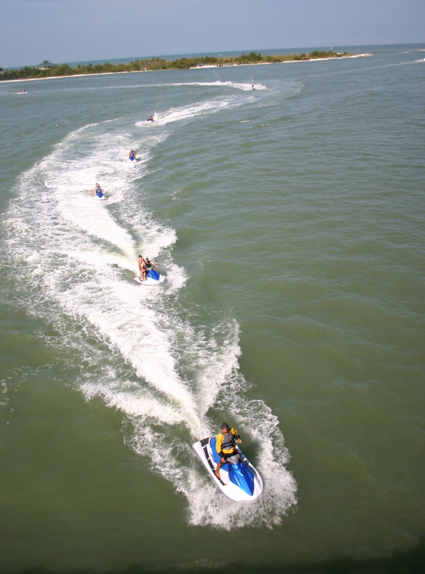 Fort Myers beach dolphin tour